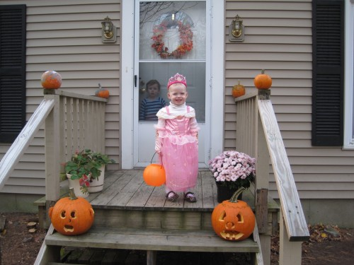 There's our little pink pumpkin princess.  Doesn't Lex look sad in the background?  He was happy not to go out though, really he was.