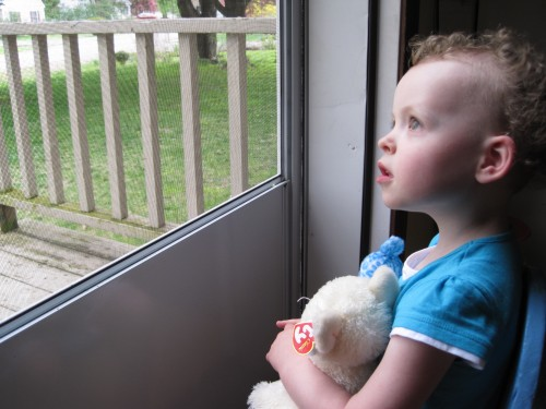 Watching out the window