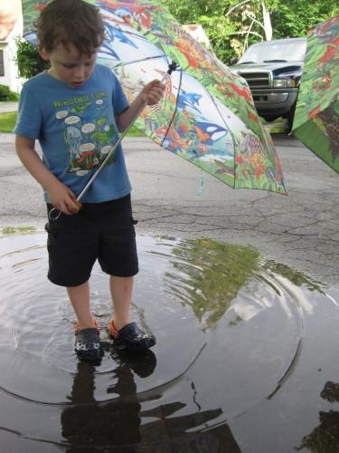 Lex in a puddle