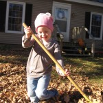 Eve raking