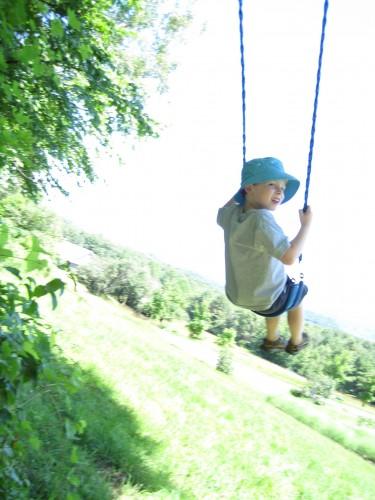 lex on swing