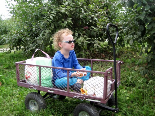 eve in wagon