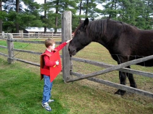 Lex and horse