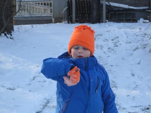 snow lex