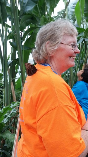 This little guy hitched a ride on Mema's shoulder as she wandered around.